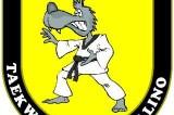 Taekwondo Avellino conquista tre argenti e due bronzi