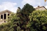 Ex villa del boss Graziano diventerà un maglificio. Arrivano 500mila euro