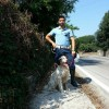 Avellino, cane smarrito ritrovato dalla Polizia Municipale