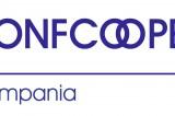 Regione Campania, approvata legge sulle cooperative di comunità