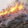 Baiano – Le prescrizioni del Comune contro l'emergenza incendi