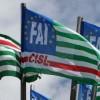 Periodo positivo per i lavoratori idraulici forestali e per i 25 Enti Delegati della Campania