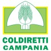 Ue: Coldiretti, stop cibi anonimi, nasce Fronte Europeo