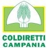Coldiretti: A Pozzuoli rinascono 56 ettari abbandonati
