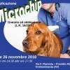 """Grottaminarda – Microchip gratuiti per tutti i cani, al via la campagna """"Anagrafe Canina"""""""