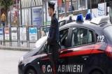 Avellino – Arrestato un 30enne per furto e danneggiamento