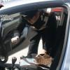 Avellino – Lotta alla droga da parte dei Carabinieri