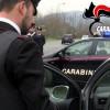 Bassa Irpinia – Controlli e denunce da parte dei Carabinieri