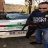 Avellino –  La Gadit  salva un gatto da un attacco di cani randagi