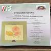 """Avellino – Presentazione """"Prisma"""", nuova raccolta di poesie"""
