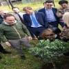 Amministrative Avellino – I giovani di Cipriano piantano un ulivo a San Tommaso
