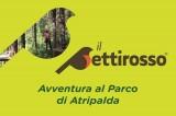 """Atripalda – Inaugurazione del Parco il """"Pettirosso"""""""