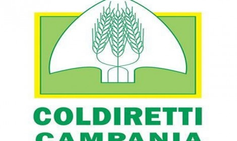 Clima: Coldiretti Campania, tagliare imballaggi con sfuso e km zero