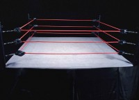 Wrestling, il titolo d'Irpinia diventa europeo