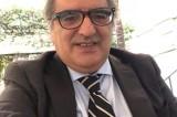 Emergenza cinghiali, Gigi Casciello:'Urge un tavolo permanente'