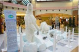 """La mostra """"Animals"""" al Centro Commerciale Le Cotoniere"""