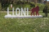 Lioni – Denuncia per occupazione abusiva padre e figlio: assolti
