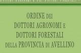Gli agronomi irpini protagonisti a Matera al XVII Congresso Nazionale