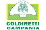 Covid: ad Avellino la befana a km zero di Coldiretti
