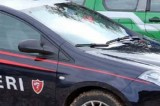 Quadrelle – Taglio abusivo di alberi: Carabinieri sequestrano 5 piante di faggio