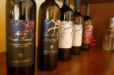 Una anno ricco di progetti per Vini De Stefano