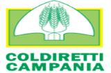 Coldiretti Campania: lo stop a 800 enoteche affossa il vino