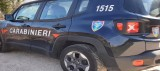 Senerchia –  Coppia Di Coniugi Denunciata Dai Carabinieri Forestali