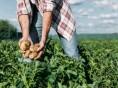 Regione Campania: più controlli per i lavoratori stagionali