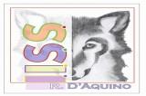 """Grande successo per l'Open Day dell'Istituto Tecnico Tecnologico """"Rinaldo d'Aquino"""""""