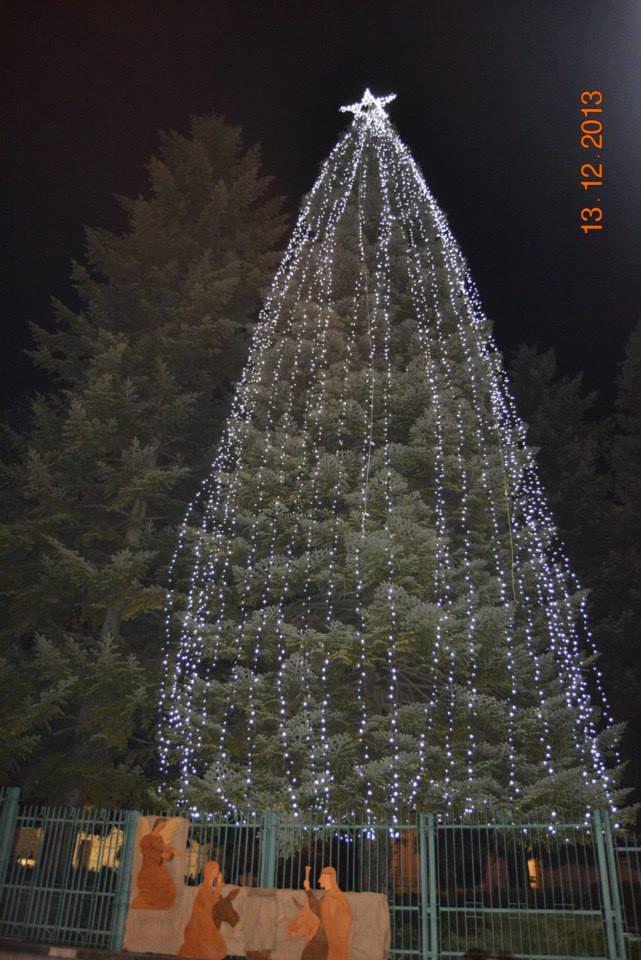 Caposele l albero di natale 33 metri di speranza dal for Secondo di natale