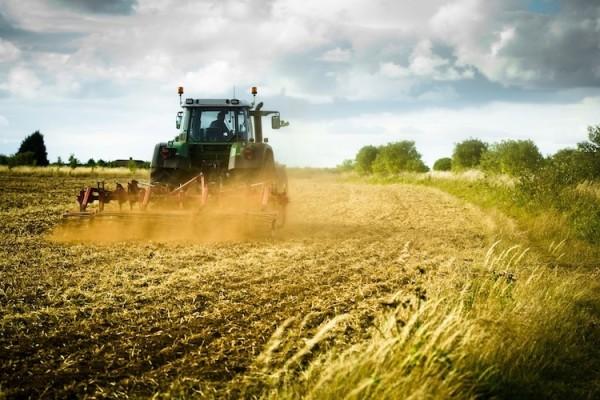 agricoltura-lavoro-agricolo-agricoltore-trattore-macchine-agricole-contoterzismo-agromeccanici-campo-campi-by-antbphotos-fotolia-750x500-e1455012167167