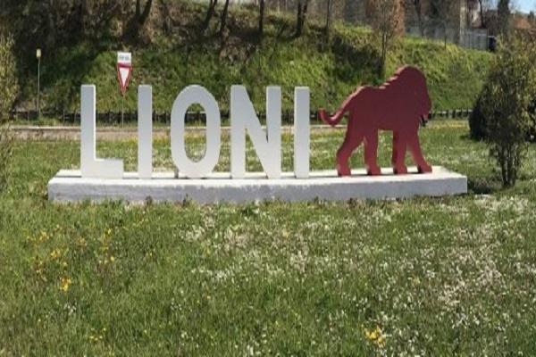 crop_LIONI-18